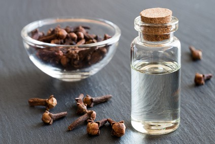 Clove Oil for Toenail Fungus